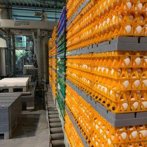 Depalletizer supply conveyors